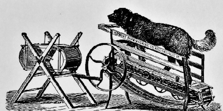 Perro trabajador en una máquina de manteca.