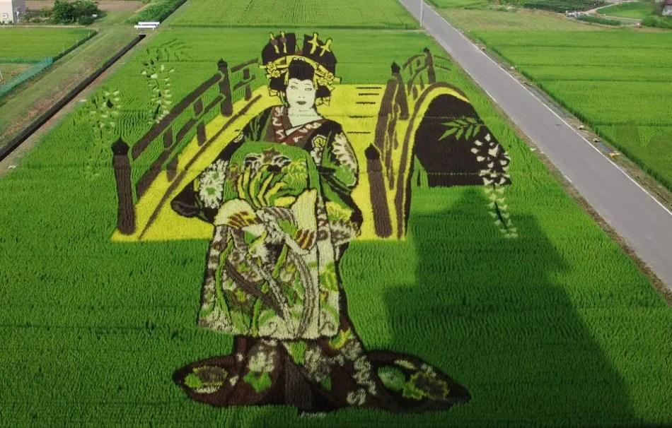 Pinturas en campos de arroz de Inakadate.