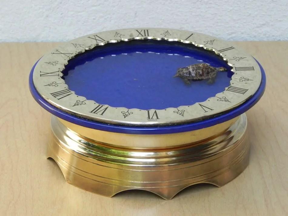 Ejemplo de un reloj tortuga en funcionamiento.