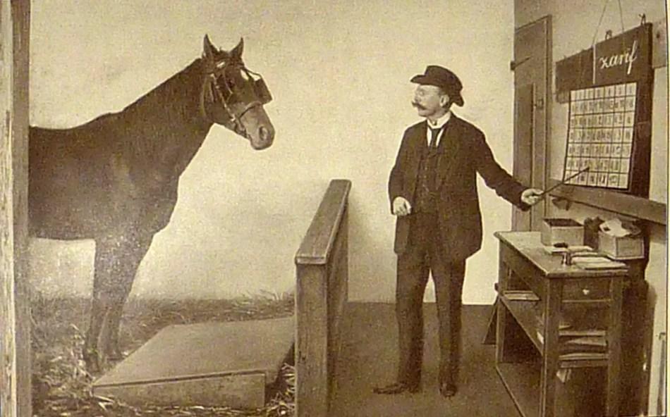 """Karl Krall y el """"caballo genio Zarif""""."""