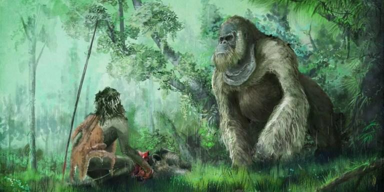 Ilustración de un Gigantopithecus blacki topándose con un ser humano prehistórico.