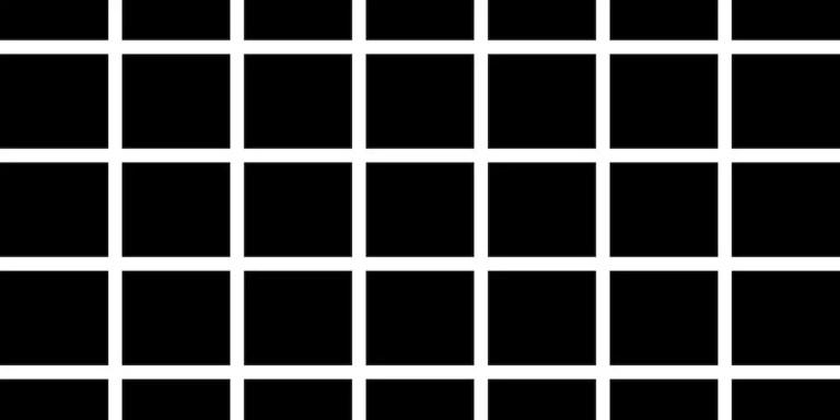 La grilla de Hermann o la ilusión óptica de Hermann.