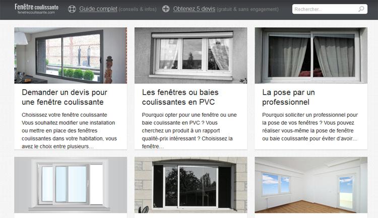 gestion dune boutique en ligne cv