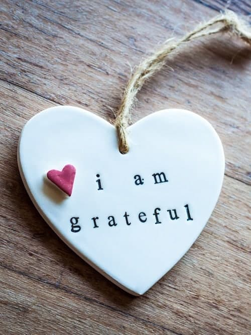 Image result for gratitude is happiness