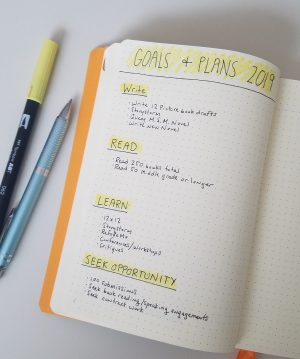 Bullet Journal Collections: Goals and Plans for 2019