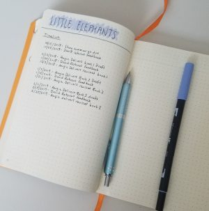Bullet Journal Collections: Project Management