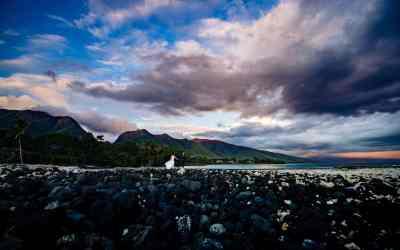 Top 5 Maui Wedding Venues