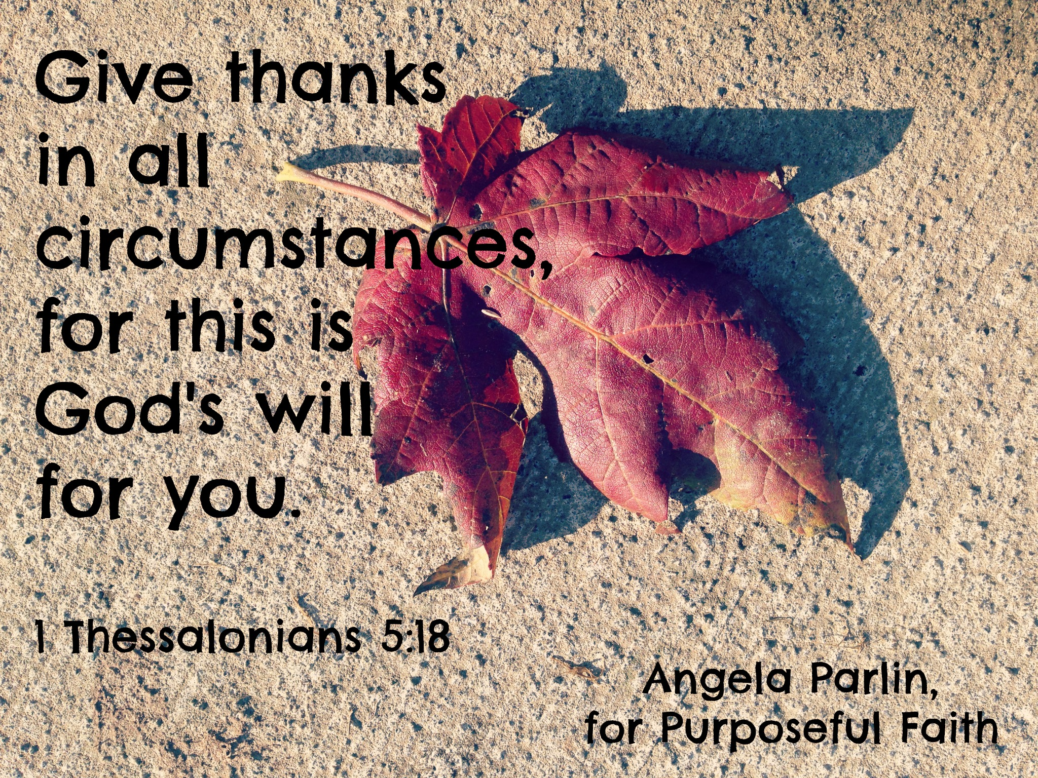 from complaints to thanks thanksgiving complaining discontent