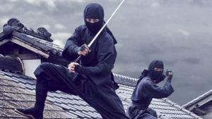 Ninja in azione