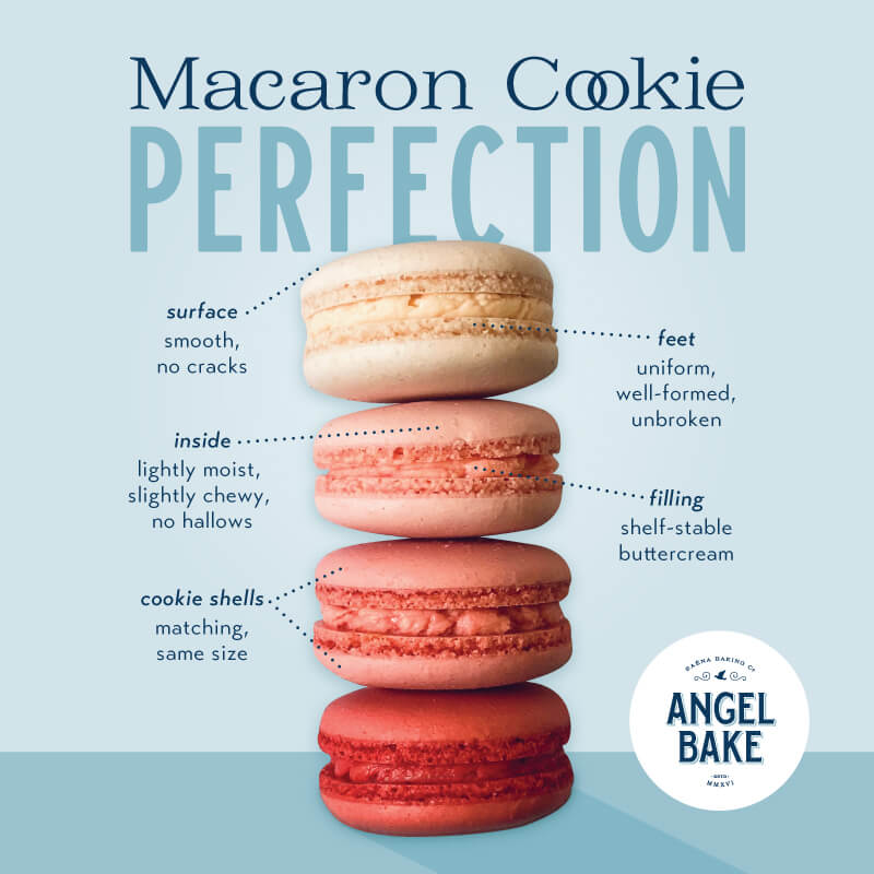 Anatomy of the Angel Bake French Macaron