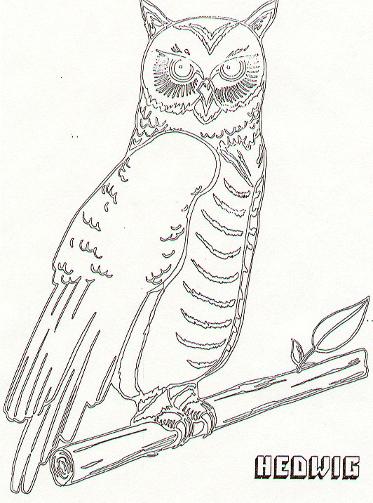 Harry Potter Sorcerers Stone Coloring Pages Sketch