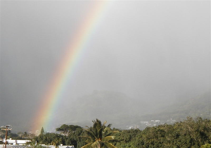 Manoa Valley rainbows