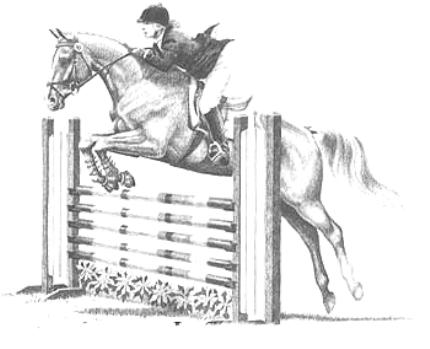 Jumping Horse Coloring Pages Realistic Coloring Pages