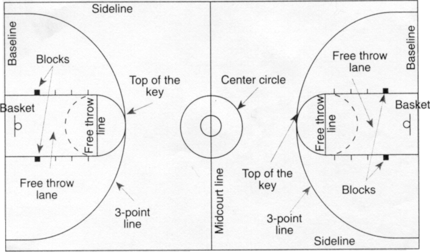 Diagram Half Court Basketball Diagram Dimension Full