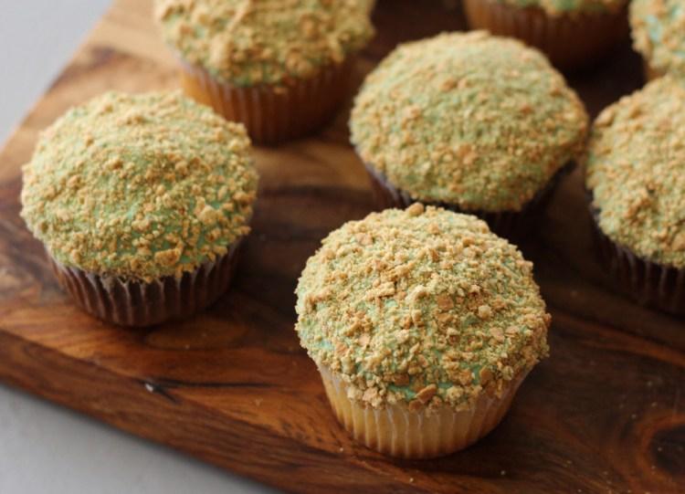 Succulent-Cactus-Cupcakes-05