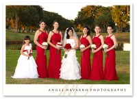 Brides And Bridesmaids | Midway Media