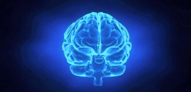 Consultoria de seguridad con neurociencia by Angel Olleros