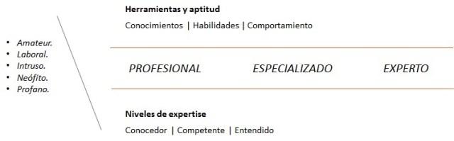 Diferencia entre profesionales, especializados y expertos