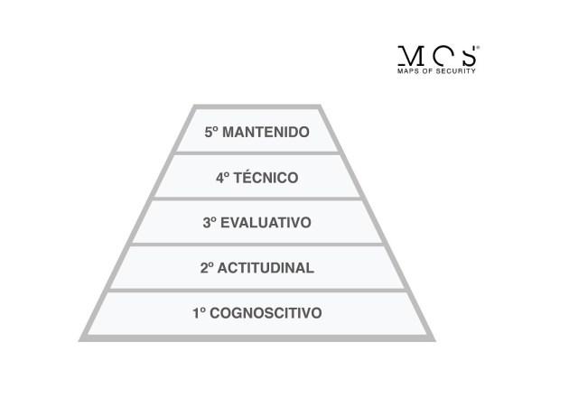 MOS_niveles evolutivos para tomar decisiones