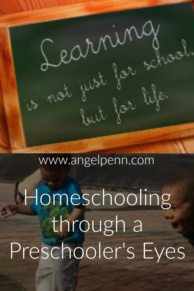I am a relatively new homeschooling mom. My oldest son is a high school junior and attends public school. However, when I started staying home a few years ago, I started to think about things a little differently.