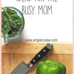 School Lunch Ideas for the Busy Mom
