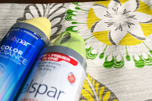 Choosing Spray Paint Colors