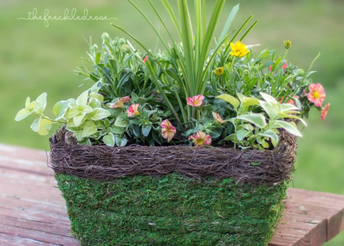 Hanging Basket How-To