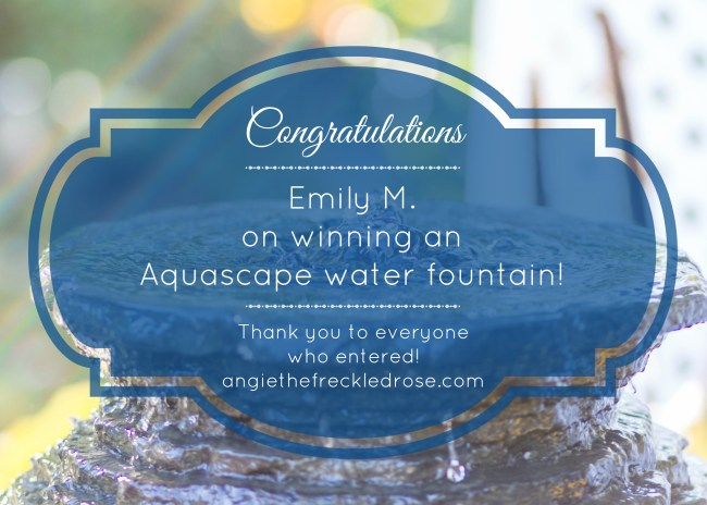 Aquascape Winner | angiethefreckledrose.com