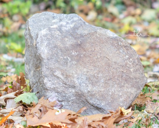 newenglandrock