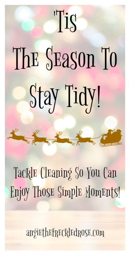 'Tis The Season To Stay Tidy | angiethefreckledrose.com