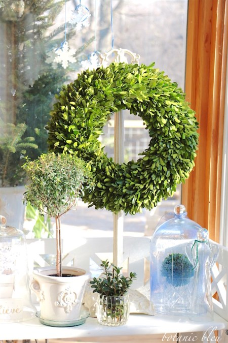 Winter Greenery After Christmas - Botanic Bleu