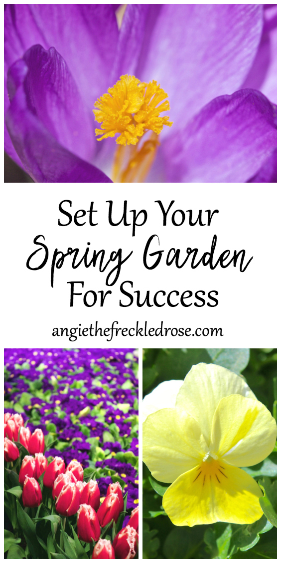 Spring is the season of hope and growth. You begin dreaming of the beautiful blooms that are to come. You start to see those first signs of green after a long winter. During the first few weeks of spring, there are measures you can take to encourage a successful gardening season. March is the month of preparation and planning.