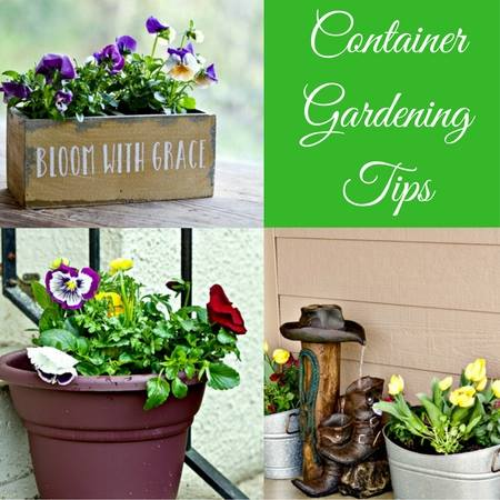 Container Gardening Ideas - Homemade Food Junkie