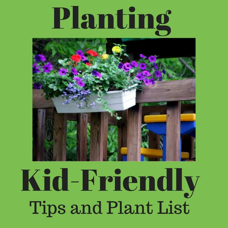 Planting Kid-Friendly Tips and Plant List- Creative Living with Bren Haas