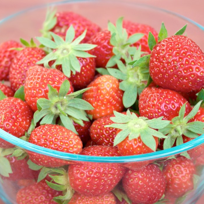 A Simple Guide to Growing Strawberries