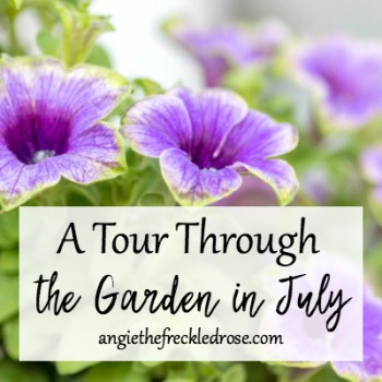 A Tour Through the Garden in July | angiethefreckledrose.com