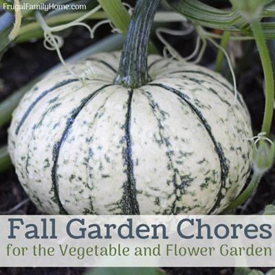 Fall Gardening Chores for the Vegetable & Flower Garden - Frugal Family Home