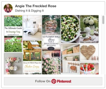 Join Our Pinterest Board | Dishing It & Digging It | Angie The Freckled Rose