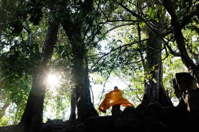 monk_in_forest_cambodia