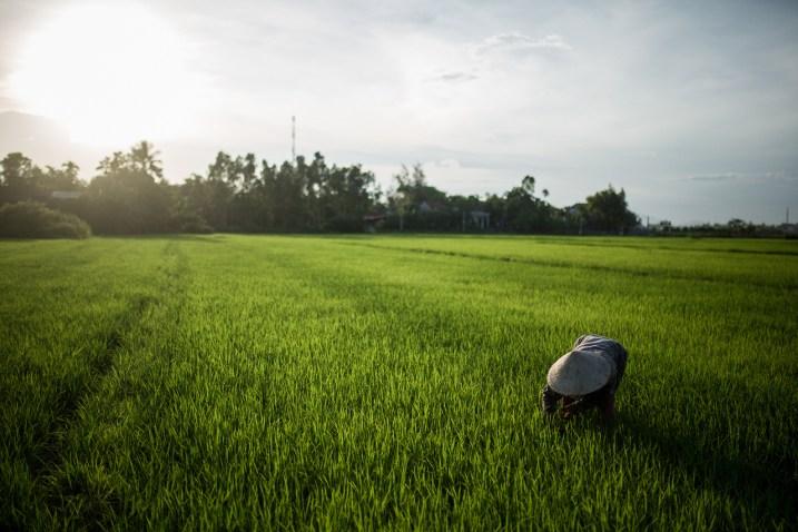 etienne_vietnam_hoi_an_countryside_03