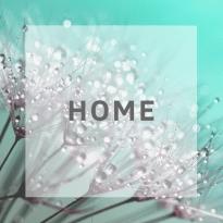 Home afbeelding