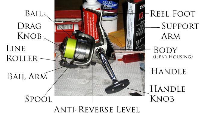 Shimano Spinning Reel Parts Diagram   Reviewmotors.co
