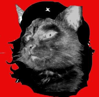 Chat Guevara