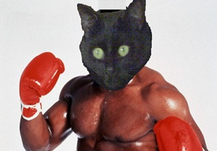 Boxing scaramouche