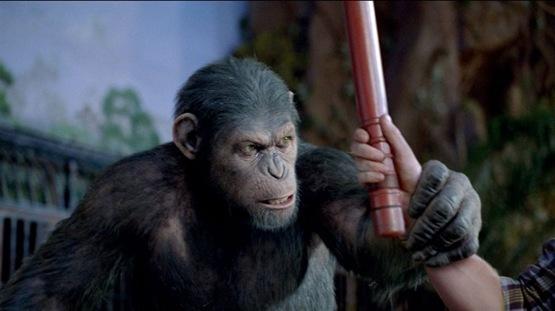 La planète des singes les origines - 3