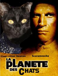 planete des chats