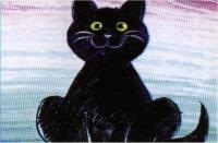 je veux un chat noir