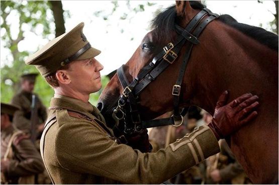 cheval de guerre - 5