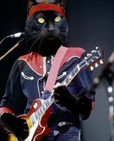 Scaramouche guitar hero