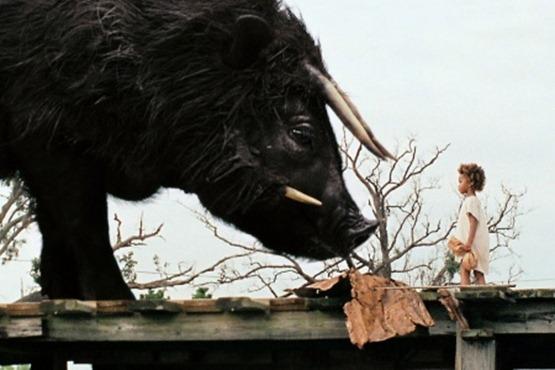 Les Bêtes du Sud sauvage - 6